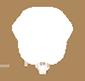 Icon Logo SKK