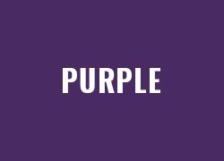 Warna Polyflex Purple